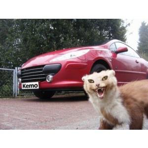 Kemo® M100N KFZ Ultraschall Marderscheuche