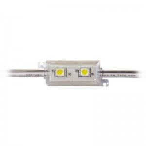 LED Modul 2 x Power SMD LEDs weiss IP65 wasserdicht
